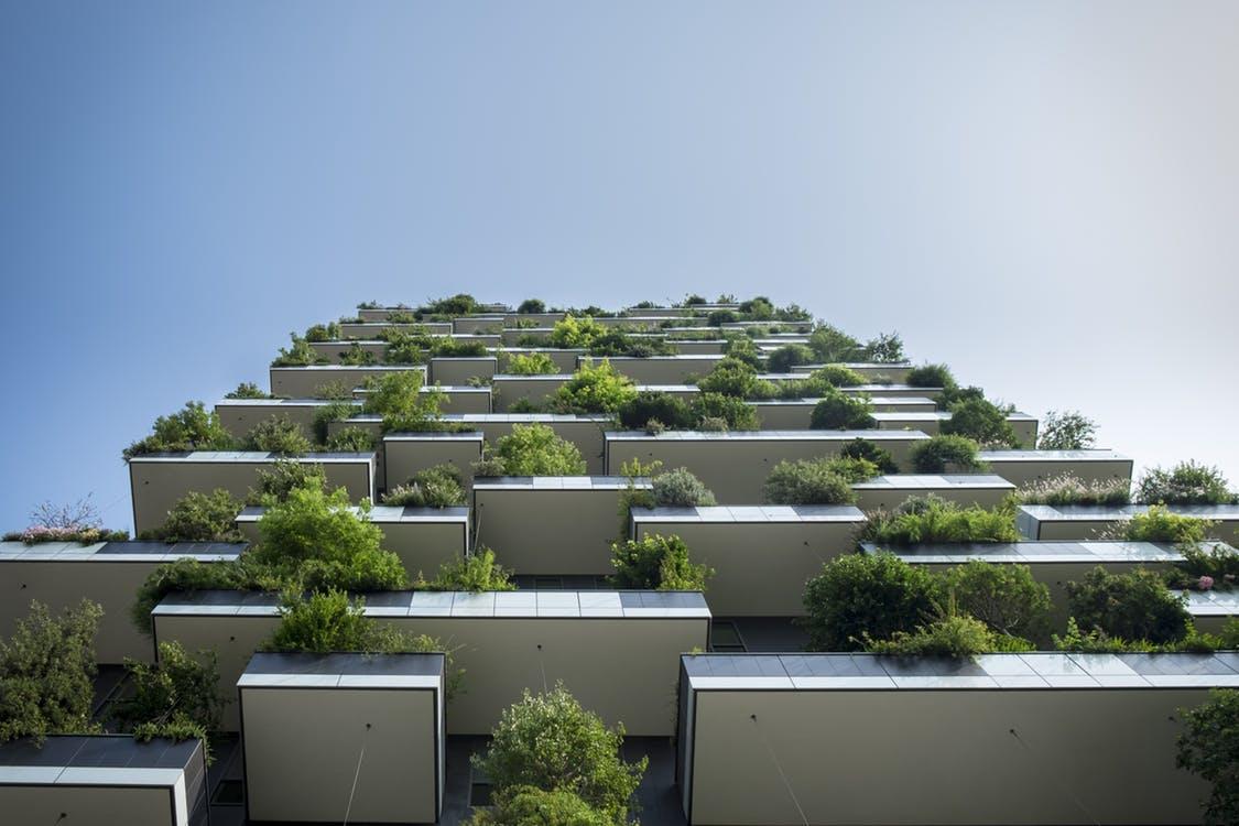 Unfonds vert à Paris